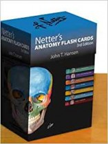 Netter's Anatomy Flash Cards: with Online Student Consult Access (Netter Basic Science) 3rd Edition