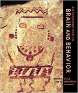 An Introduction to Brain and Behavior 2nd Edition
