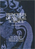 Principles of Neural Science 4th Edition