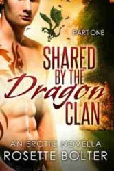 Shared By The Dragon Clan series (1-4) by Rosette Bolter