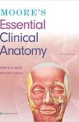 Moores Essential Clinical Anatomy 6th Edition